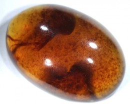 13.3  CTS AMBER  INDONESIA  TBG-618