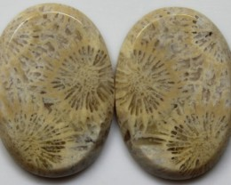 26.60 CTS  PAIR OF POLISHED CORAL NATURAL STONES