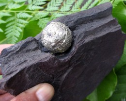 PYRITE BALL ON SLATE MINERAL SPECIMEN 500 GRAMS MYGM 728