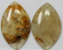 17.05 CTS JASPER PAIR POLISHED STONES GREAT RANGE IN STORE