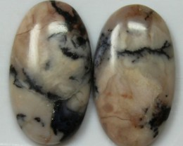 12.65 CTS AGATE PAIR POLISHED STONES GREAT RANGE IN STORE