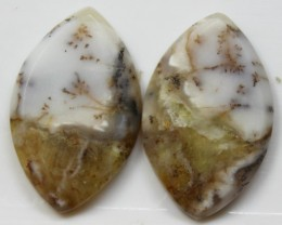 19.85 CTS JASPER PAIR POLISHED STONES GREAT RANGE IN STORE