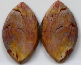 21.75 CTS JASPER PAIR POLISHED STONES GREAT RANGE IN STORE