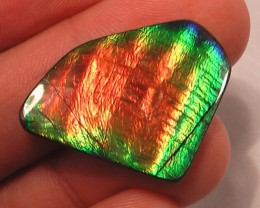 EXCELLENT SHIMMERING 'RAINBOW' NATURAL AMMOLITE GEM LARGE!