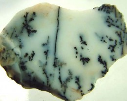 DENDRITIC OPAL -ROUGH  48CTS [MFJP2813]