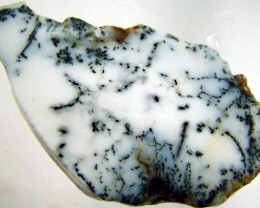 DENDRITIC OPAL -ROUGH  110CTS [MFJP2816]