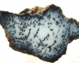 DENDRITIC OPAL -ROUGH  41CTS [MFJP2830]