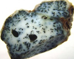 DENDRITIC OPAL -ROUGH 40 CTS [MFJP2831]
