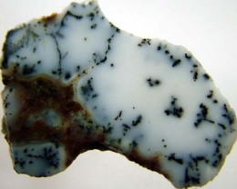 DENDRITIC OPAL -ROUGH  33CTS [MFJP2848]