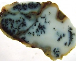 DENDRITIC OPAL -ROUGH  19CTS [MFJP2849]