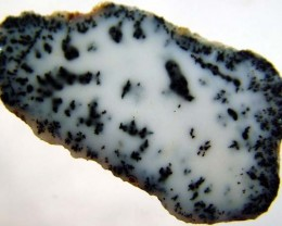 DENDRITIC OPAL -ROUGH  30CTS [MFJP2854]