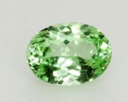 2.1ct Merelani Mint Garnet (PG-54-6-MN)