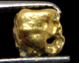 0.56 GRAMS  AUSTRALIAN  GOLD NUGGET    LGN 1224