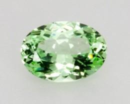 1.6ct Merelani Mint Garnet (PG-68-10-MN)