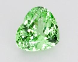 2.5ct Merelani Mint Garnet (PG-82-37-MP)