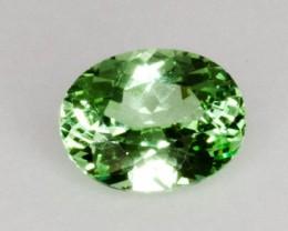 1.7ct Merelani Mint Garnet (PG-AM5-2-MS)