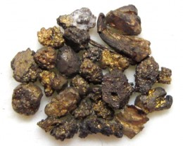 1.54 Grams Gympie Qld gold Nuggets  LGN 1246