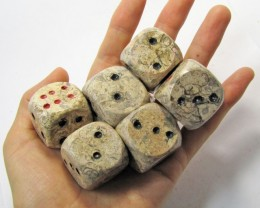 CTS THREE PAIR PAIR DICE IN MOROCCAN SEA FOSSIL MYGM 1659