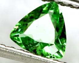 0.63 cts vivid Green Tsavorite Garnet (GTS18)