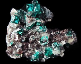 16.20CTS RARE EMERALD GREEN DIOPTASE FROM KAZAKHSTAN MGW4071