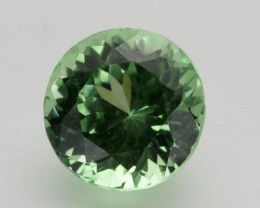 2.5ct Merelani Mint Garnet (PG-92-10-MU)