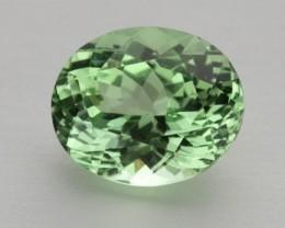 2.3ct Merelani Mint Garnet (PG-92-21-MU)