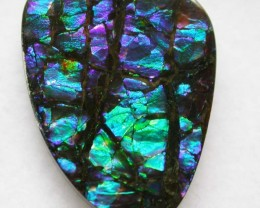 13 CTS GEM QUALITY  CANADIAN AMMOLITE -POLISHED-  [ST8035  ]