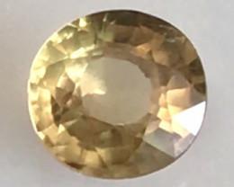 1.35ct Brilliant Round Yellow Zircon - Cambodia  THA23 F52 G583