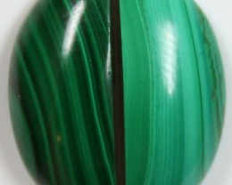 19.5 CTS MALACHITE PAIR OF STONE TOP GLOSSY POLISH ON STONES
