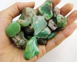 800 Cts tumbled Aussie chrysophrase  MYGM 2030