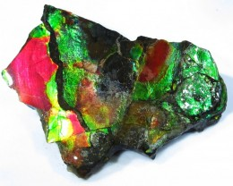20.99 CTS AMMOLITE  ROUGH SPECIMEN FROM CANADA [F4744]