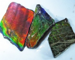 21.55 CTS AMMOLITE  ROUGH PARCEL SPECIMEN FROM CANADA  F4756
