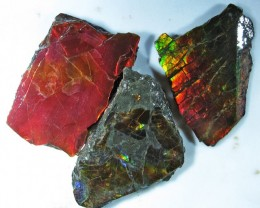 38.12 CTS AMMOLITE  ROUGH PARCEL SPECIMEN FROM CANADA  F4759