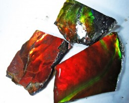 30.53 CTS AMMOLITE  ROUGH PARCEL SPECIMEN FROM CANADA  F4765