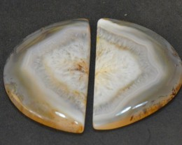 MUSEUM GRADE Pair 44mm Botswana Agate cabochon gold color