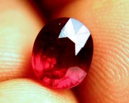 2.90 Carat Fiery Pigeon Blood Ruby - Gorgeous