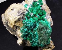 13.6 CTS DIOPTASE SPECIMEN-EMERALD GREEN [ST8420 ]