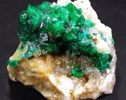 68.9 CTS DIOPTASE SPECIMEN-EMERALD GREEN [ST8501]