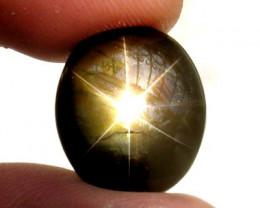 12.87 Carat Thailand Black Star Sapphire - Impressive