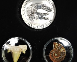 Silver Salt Crocodile with Ammonite & Shark tooth CC117