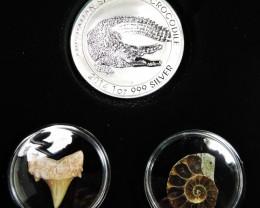 Silver Salt Crocodile with Ammonite & Shark tooth CC118