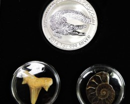 Wild World Series-Silver Salt Crocodile with Ammonite & Shark tooth CC1