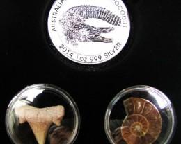 Silver Salt Crocodile with Ammonite & Shark tooth CC130