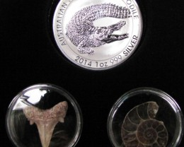 Silver Salt Crocodile with Ammonite & Shark tooth CC123