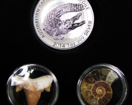 Silver Salt Crocodile with Ammonite & Shark tooth CC122