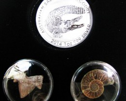 Silver Salt Crocodile with Ammonite & Shark tooth CC111