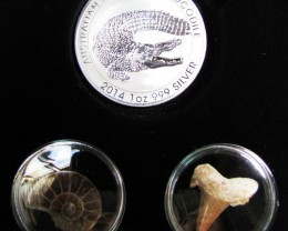 Silver Salt Crocodile with Ammonite & Shark tooth CC110