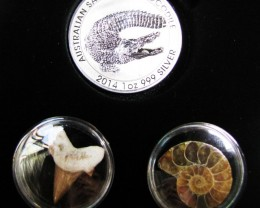 Silver Salt Crocodile with Ammonite & Shark tooth CC112