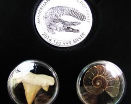 Silver Salt Crocodile with Ammonite & Shark tooth CC113