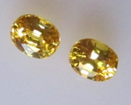 0.78cts  Matching Pair Natural Oval Golden Sapphires 2pcs